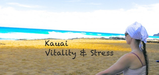 Level 2 Vitality & Stress, begins Sat. Nov. 1st!