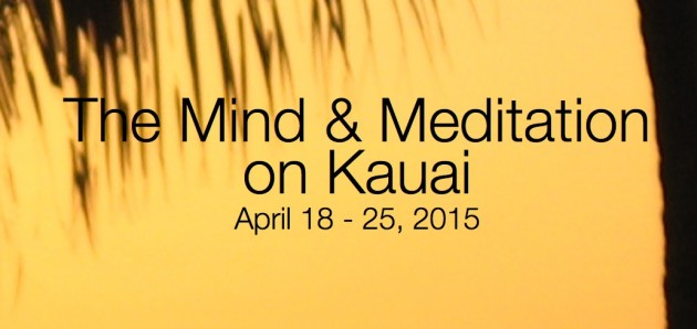 Level 2 The Mind & Meditation, begins Sat. April 18, 2015!